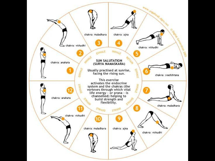 Yoga Sun Salutation Steps Printable Sun Salutation Yoga Steps