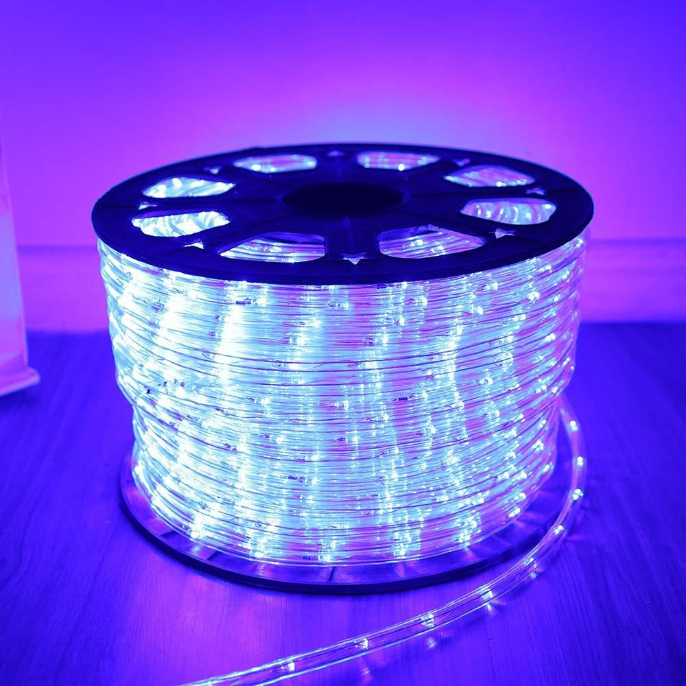 100ft Waterproof Led Rope Light Led Rope Rope Light