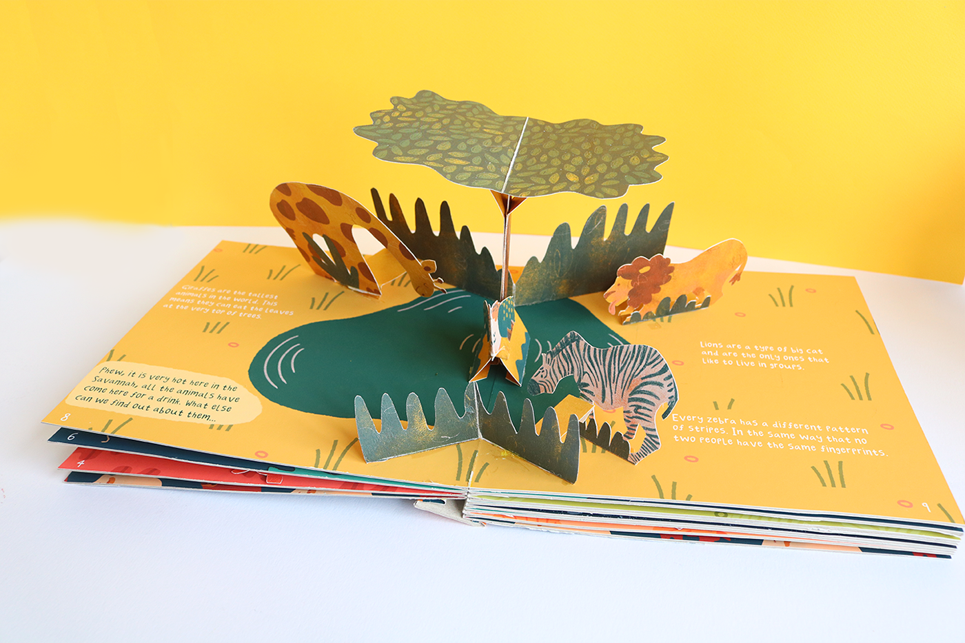 Illustrated Animal Pop Up Book On Behance In 2020 Children S Pop Up Books Pop Up Book Pop Up