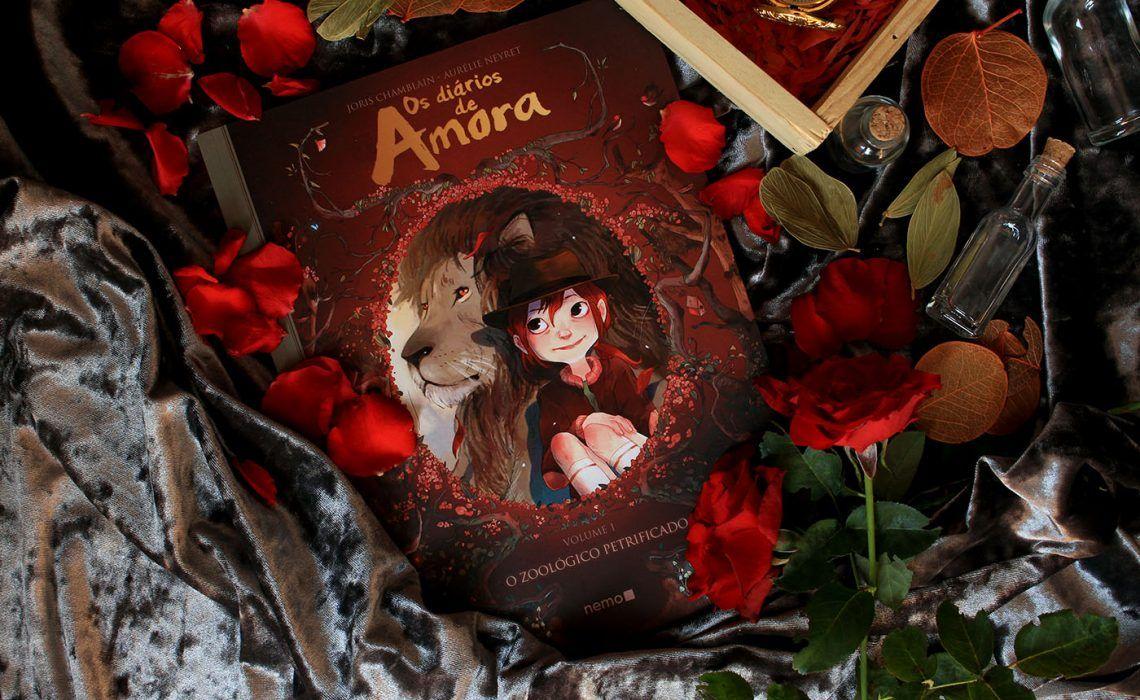 Os Diarios De Amora Joris Chamblain Aurelie Neyret Em 2020