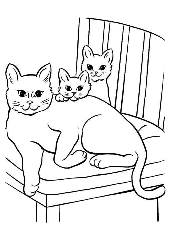 The Cat On A Chair Animal Coloring Pages Cat Coloring Page Kittens Coloring