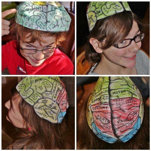 The Fantastic Five: We\'ve Got Nerve! (Nervous System Activities) | L ...