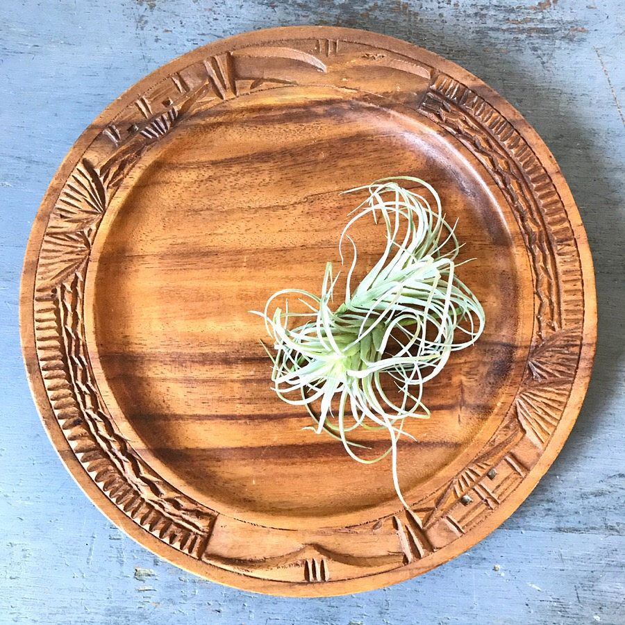 carved wooden serving tray - wood plate charger - decorative wall plate - Polynesian tiki style  sc 1 st  Pinterest & carved wooden serving tray - wood plate charger - decorative wall ...