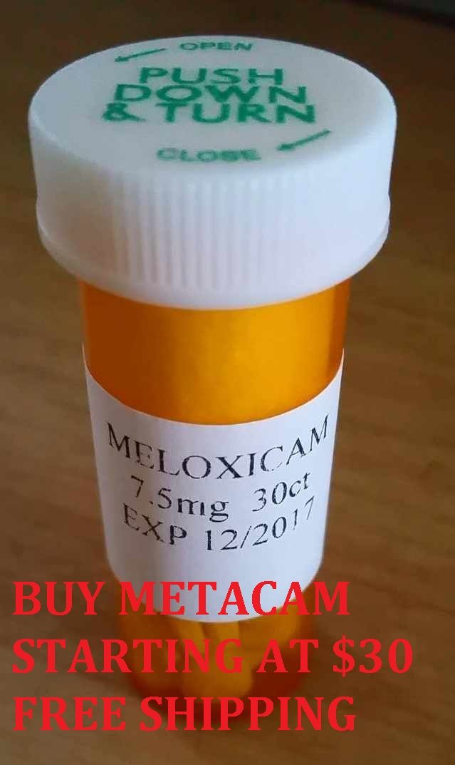 Meloxicam For Dogs No Prescription Rx Metacan Clavamox For