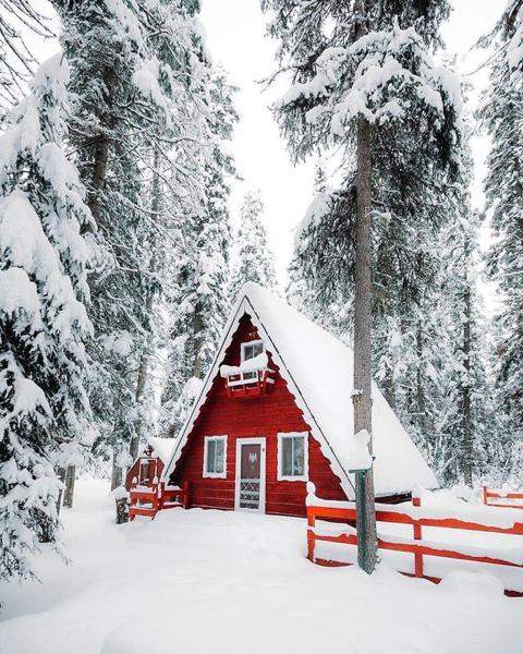 Pin by Al-Adodi on Winter & Snow | Pinterest | Winter snow