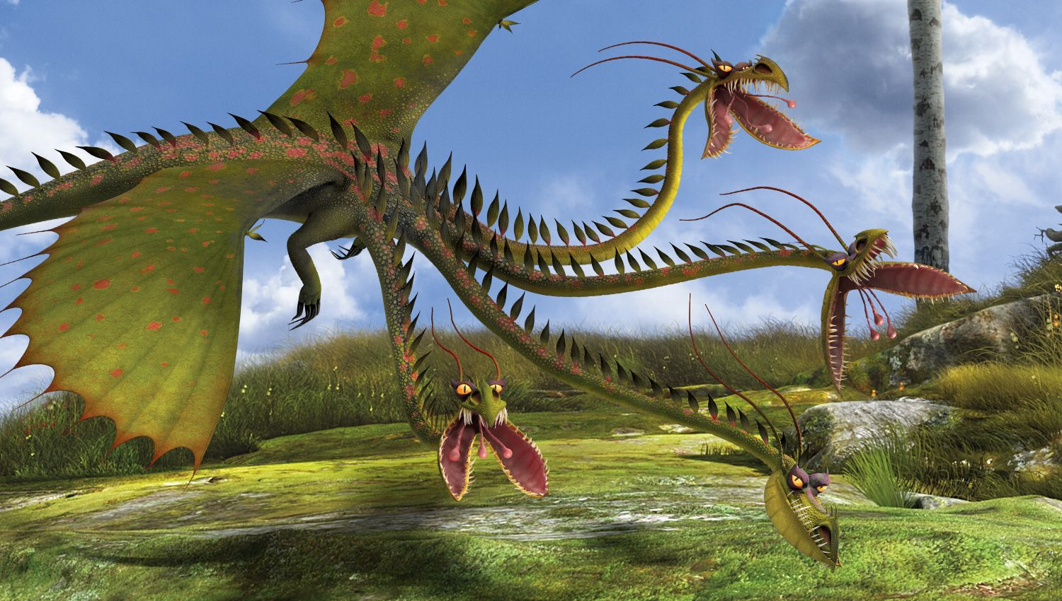 Learn how to draw changewing from how to train your dragon how to - While As Beautiful And Serene As An Exotic Flower Upon First Blush The Four Headed Snaptrapper Is Actually One Of The Most Insidious And Deadly Dragons