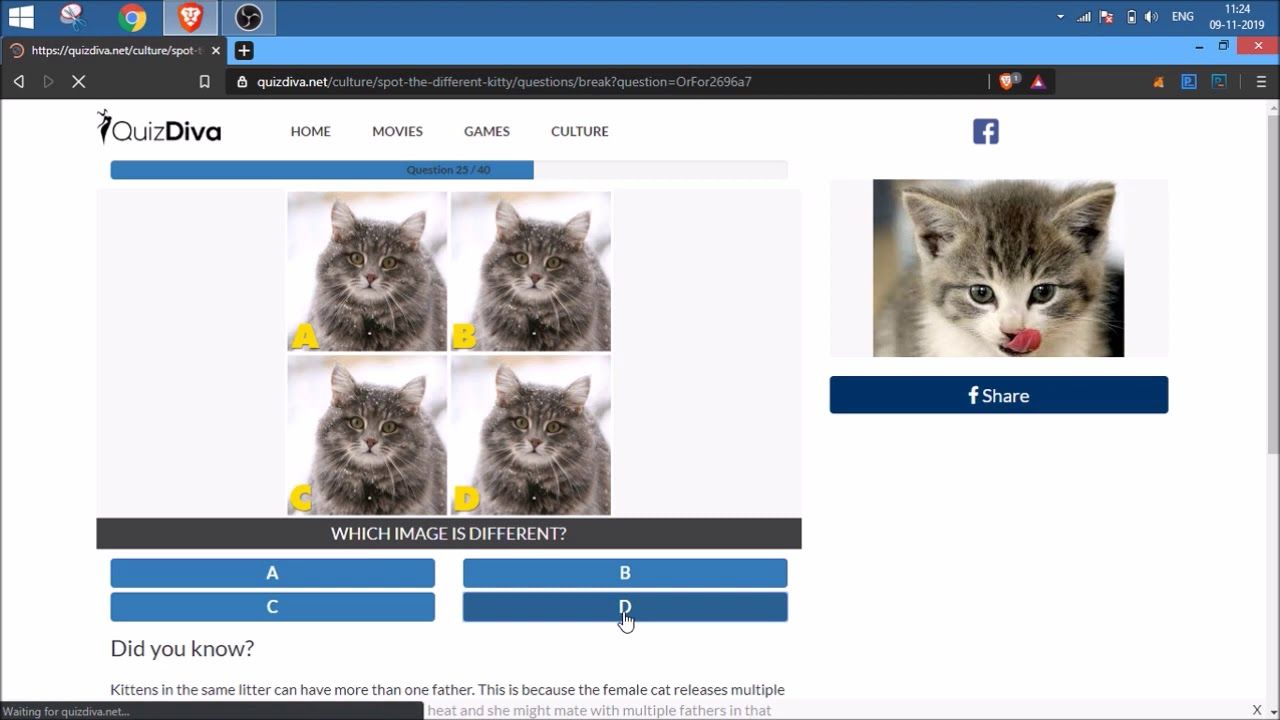 Quiz Diva Kitty Difference Answers 40 Questions Score 100 Video Myneobuxsolutions This Or That Questions Movie Game Home Movies