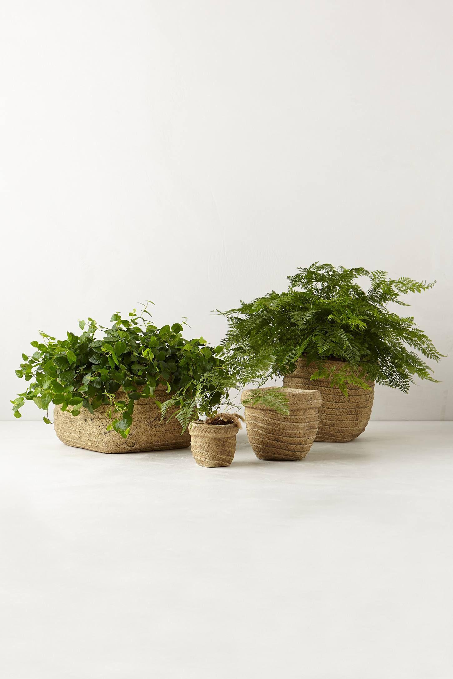 Basket Weave Garden Pot