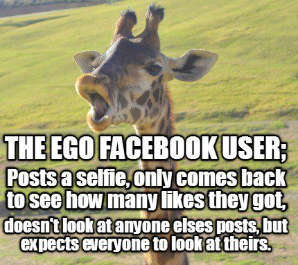 The Ego Facebook User Posts A Selfie Only Comes Back To See How Many Likes The Meme Generator At Memecreator Org Facebook Users Generations Quotes Ego