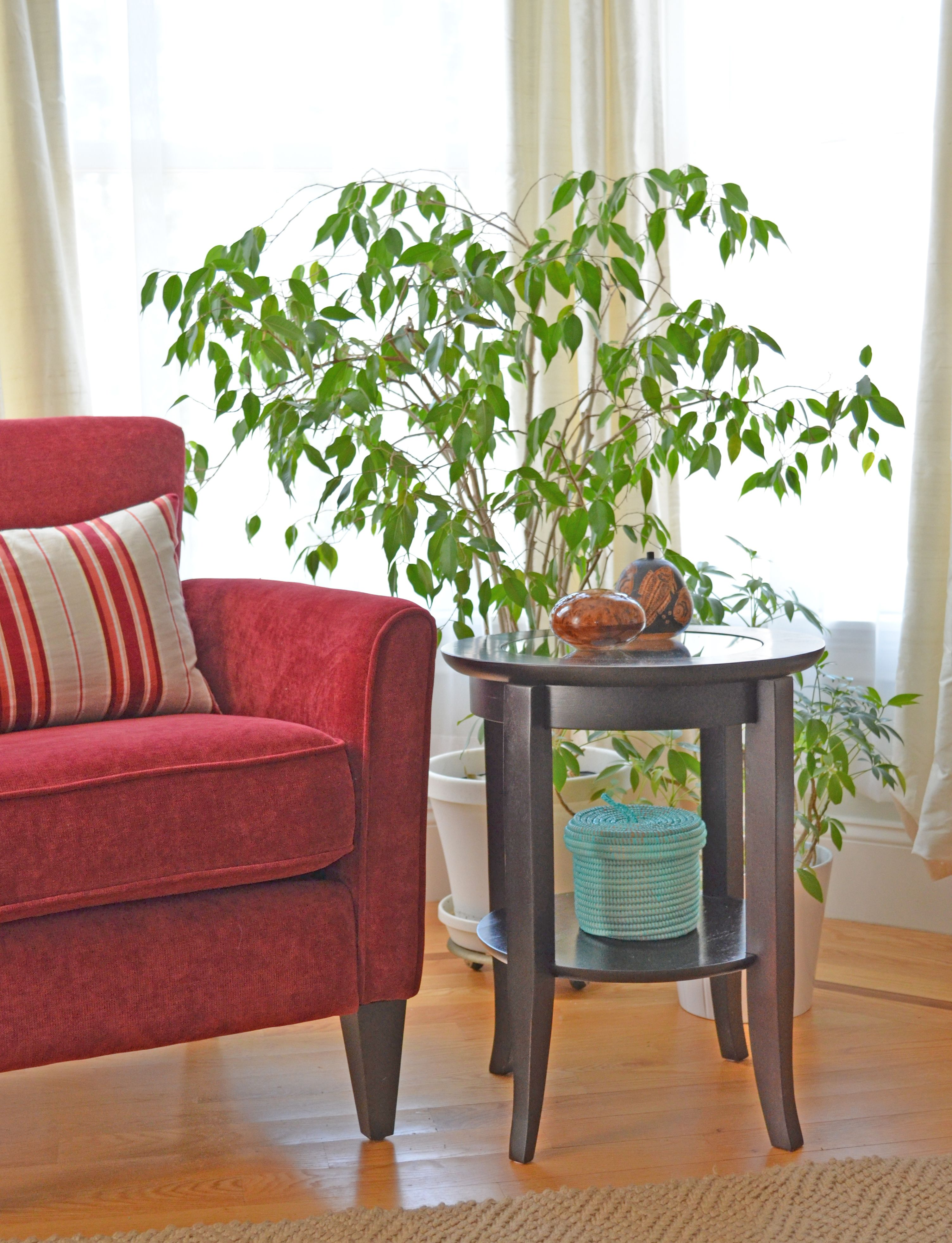 Adding some interest to a side table in a bright corner of the room. http://www.dogwoodbox.com/