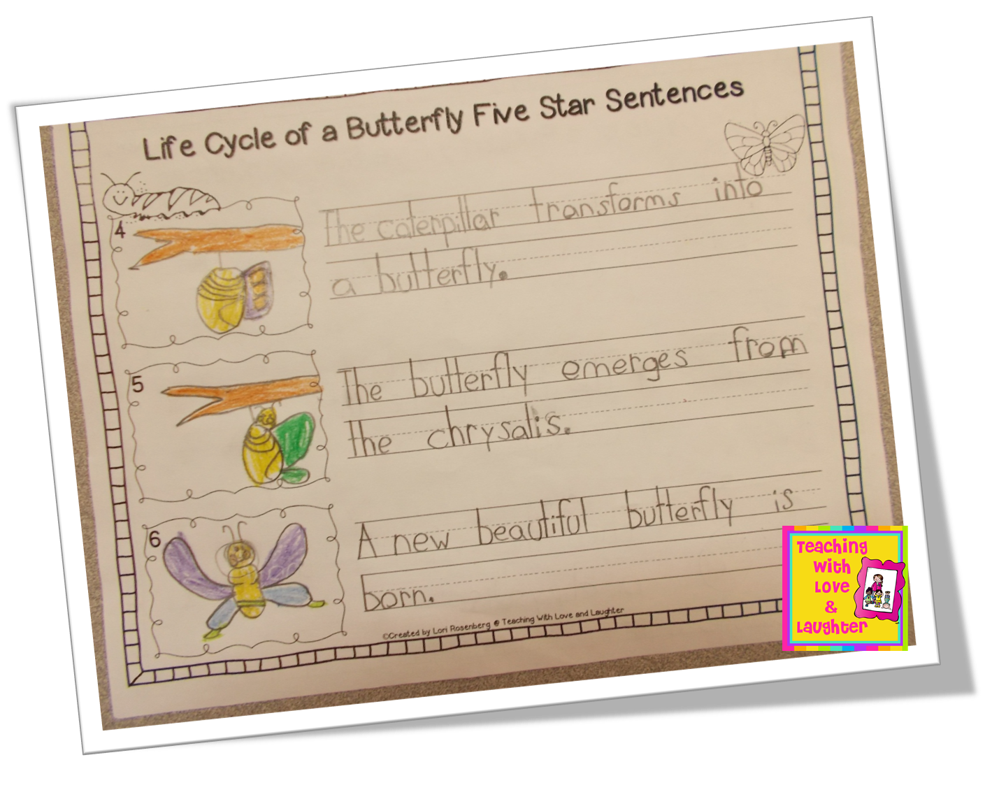 Butterfly Cycle Article For 1 Grade