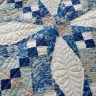 Feather Quilting Designs | AllPeopleQuilt.com