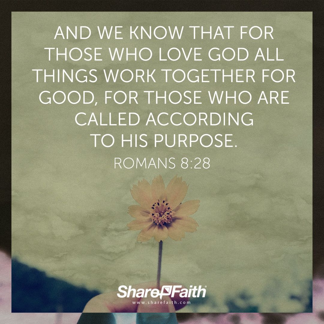 Father And Son Working Together Quotes: And We Know That For Those Who Love God All Things Work
