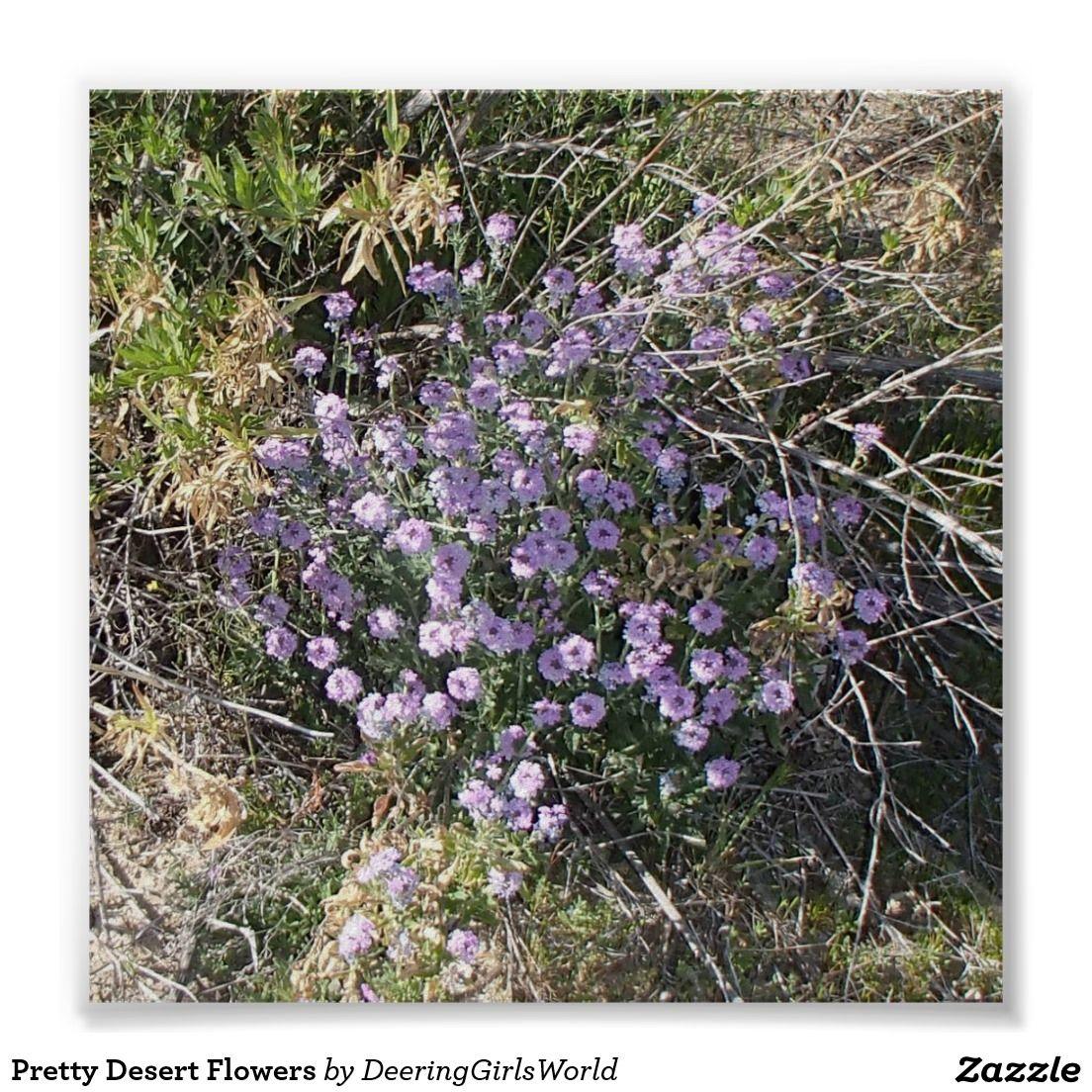 Pretty Desert Flowers Poster
