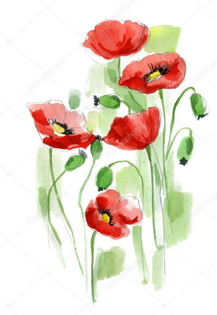 Akvarel Buket Image Bouquet De Fleurs Illustration Noel Et