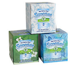 graphic relating to Scotties Tissues Printable Coupon named South Suburban Price savings: Contemporary Superior Truly worth Coupon: $1/2 Scotties
