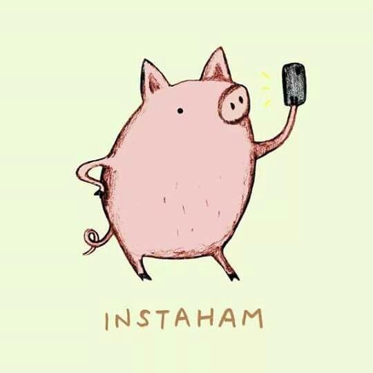 Image result for ham puns