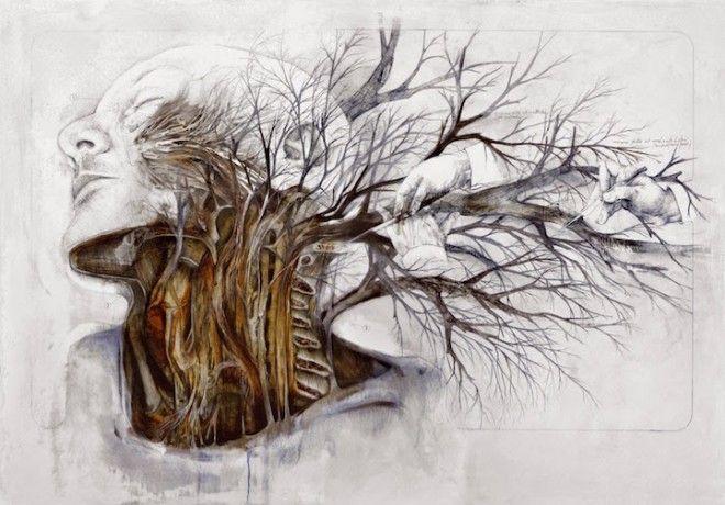 anatomia humana dibujada a lapiz - Buscar con Google | Drawings ...