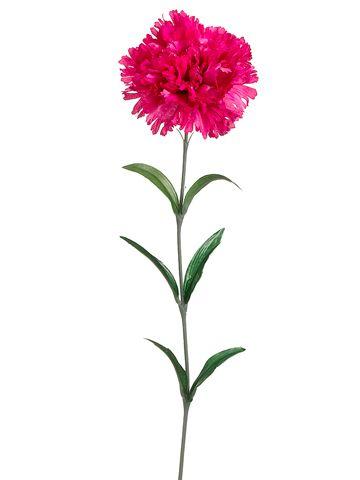 Carnations Carnation Tattoo Carnation Flower Tattoo Carnation Flower