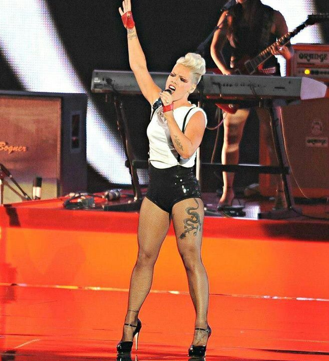 Pin by Vickey Elam Waldo on P!nk #concert pics I went to and pics I love |  Pink singer, Pink girl, Pink love
