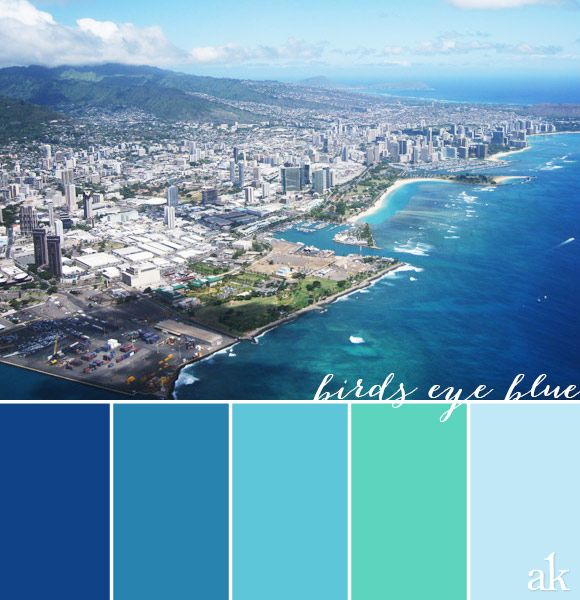 An ocean inspired color palette based on honolulu for Ocean blue color combinations