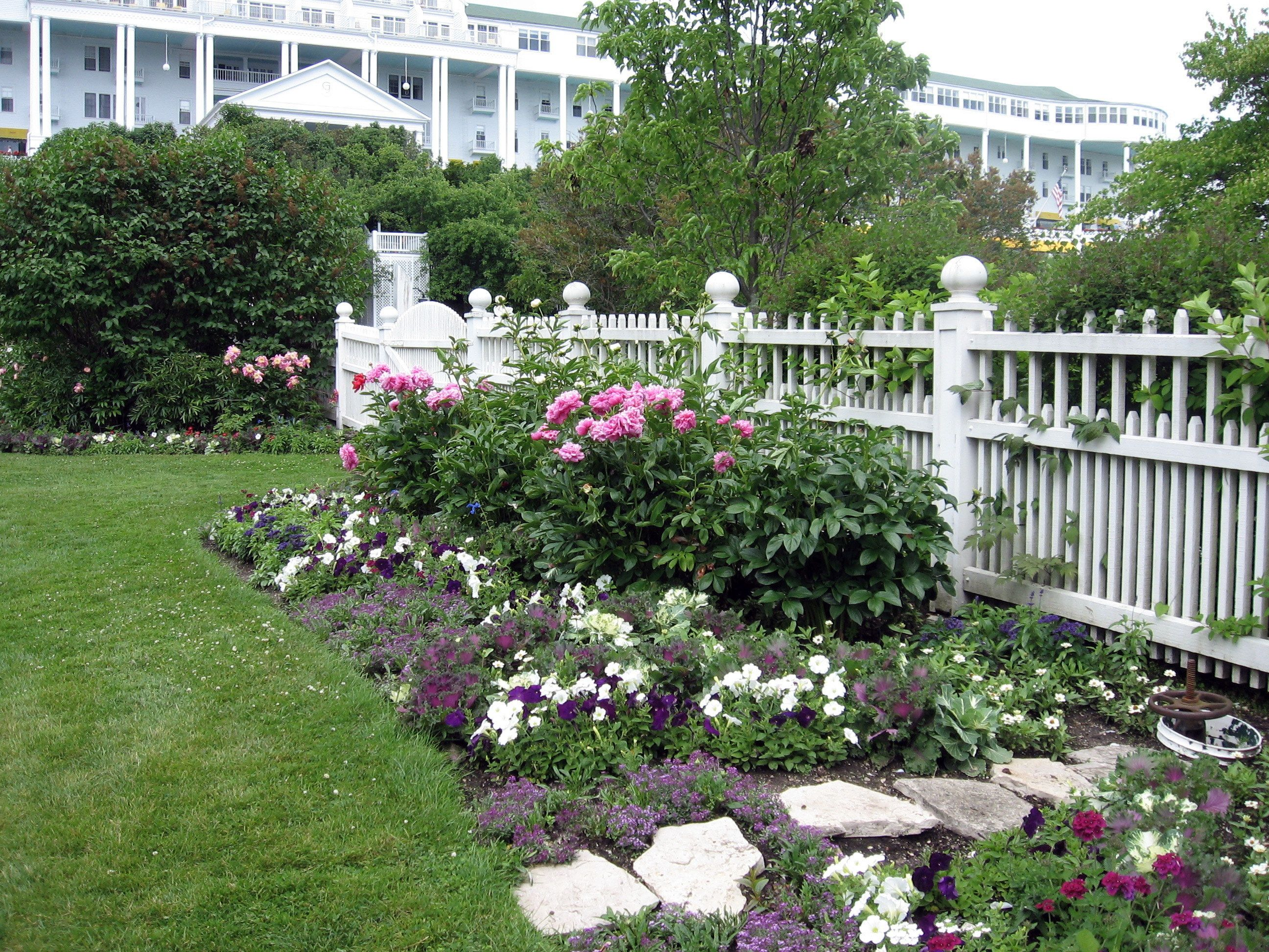 peonies along fence garden Pinterest Peony Fences and Flowers