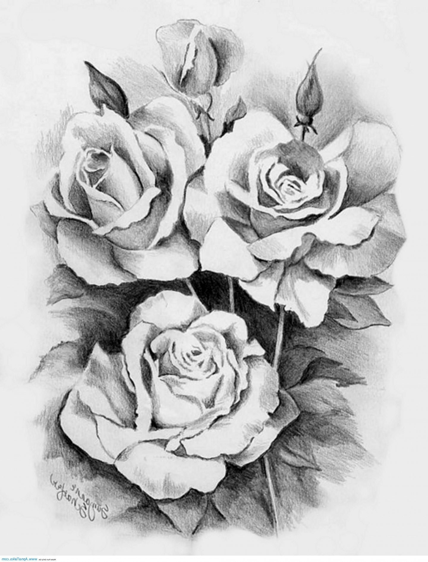 Awesome Black And White Three Roses Tattoo Design