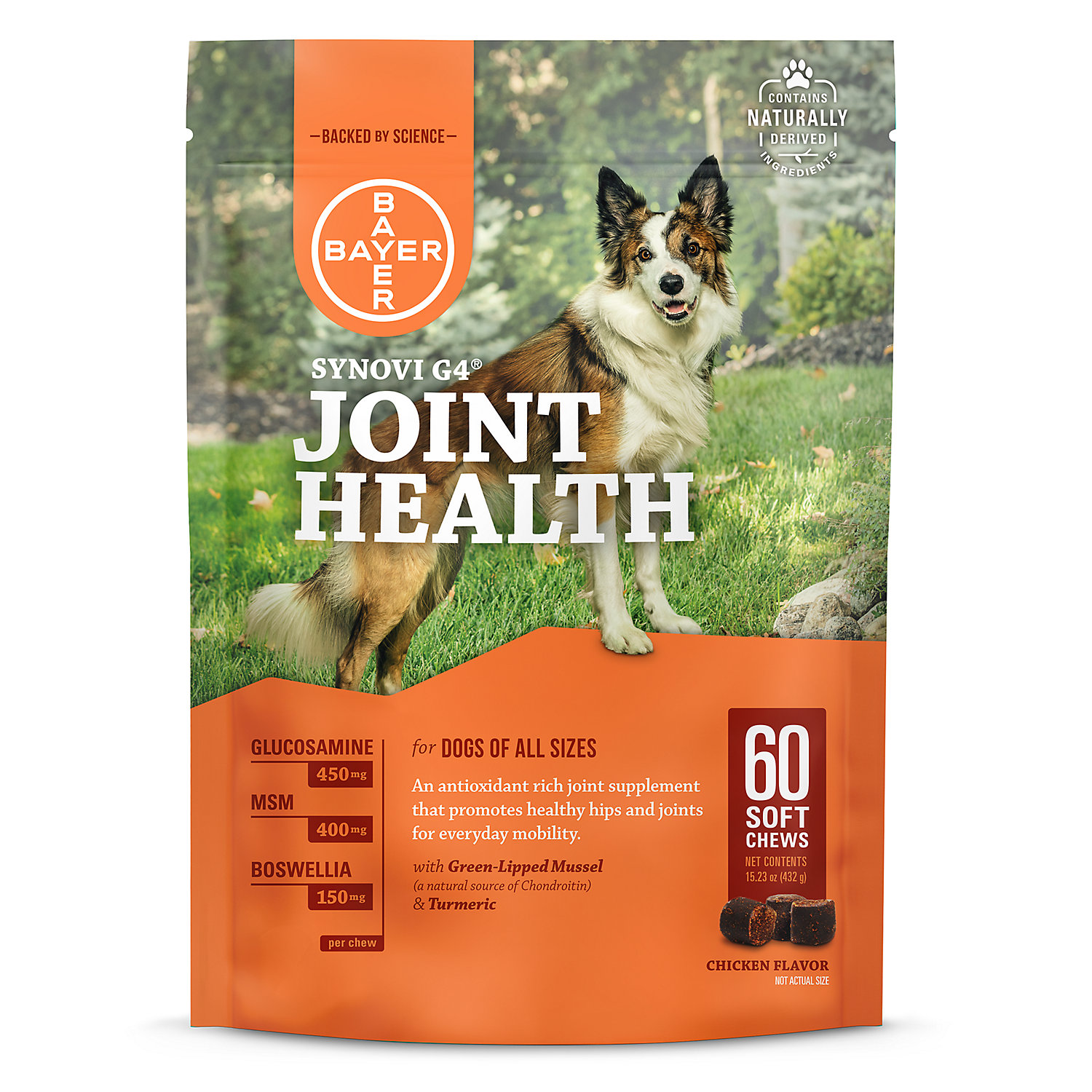 Bayer Synovi G4 Soft Chews Glucosamine Joint Supplement For Dogs