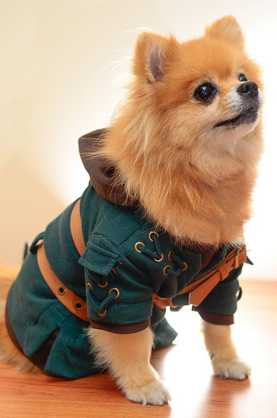 LEGEND OF ZELDA Link Dog Costume by HachiCorp on Etsy & LEGEND OF ZELDA Link Dog Costume by HachiCorp on Etsy | Geeky Pets ...