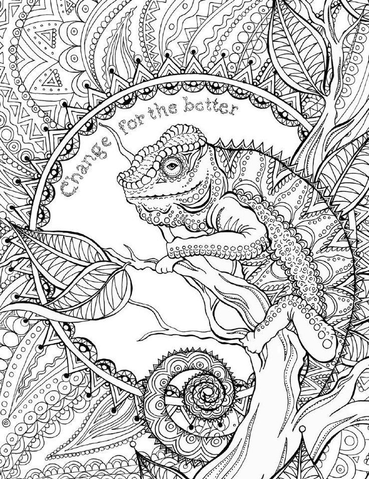 Coloring Book Test Mandala Coloring Pages Coloring Books Animal Coloring Pages