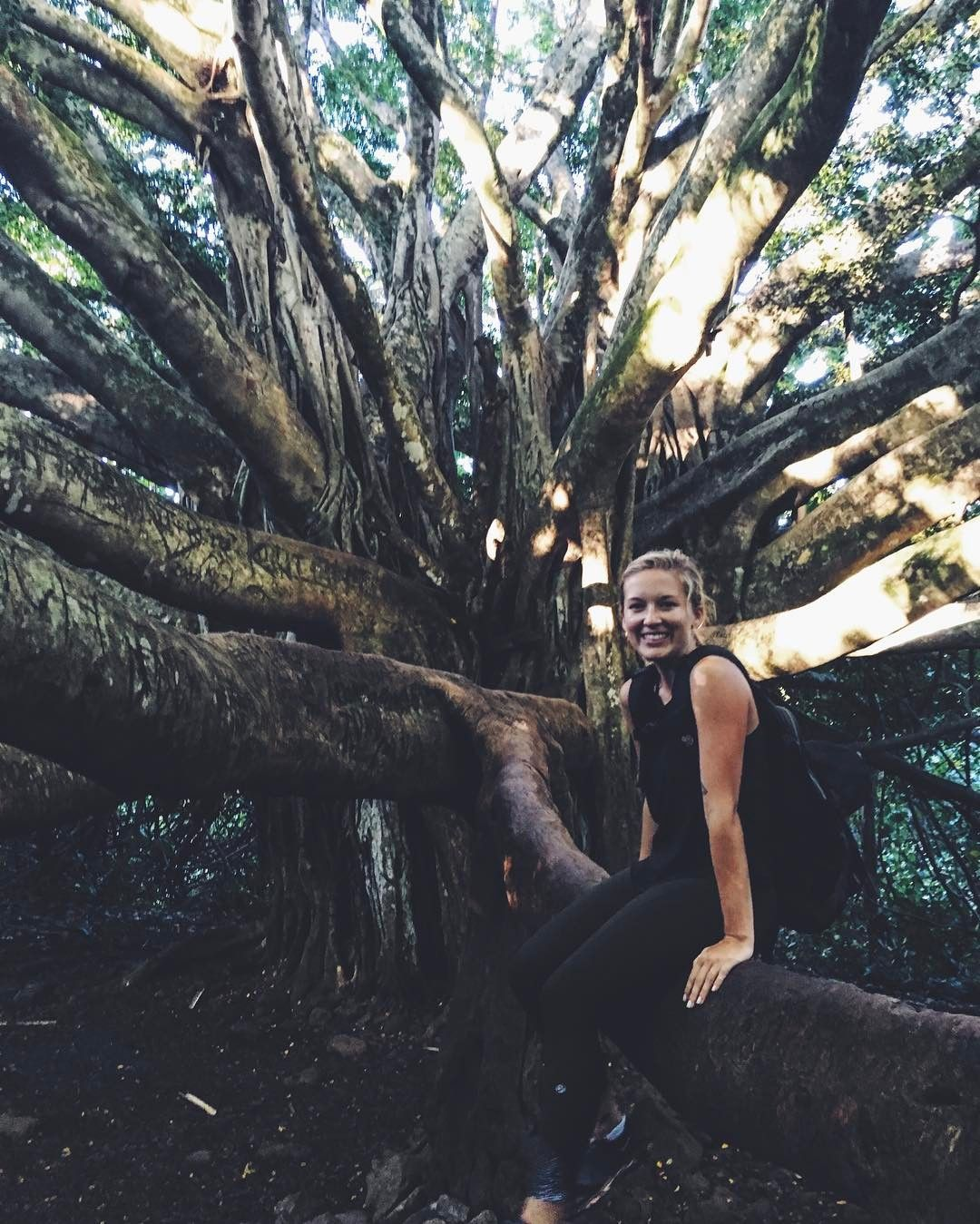 "152 Likes, 8 Comments - McKenzie Marie Mayer (@ckenzi_m) on Instagram: ""Banyan trees are outrageous"""