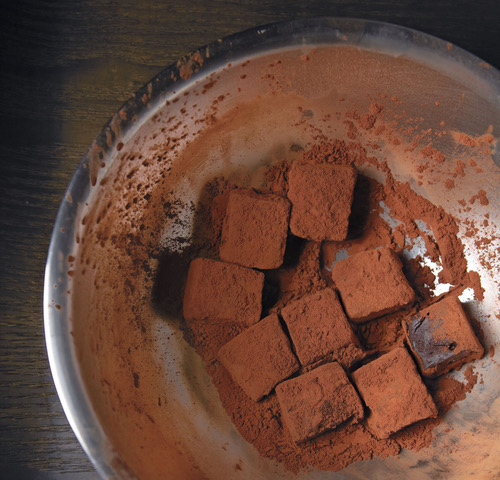 Alice Medrich's Cocolat House Truffle 6.0 | Market Hall Foods