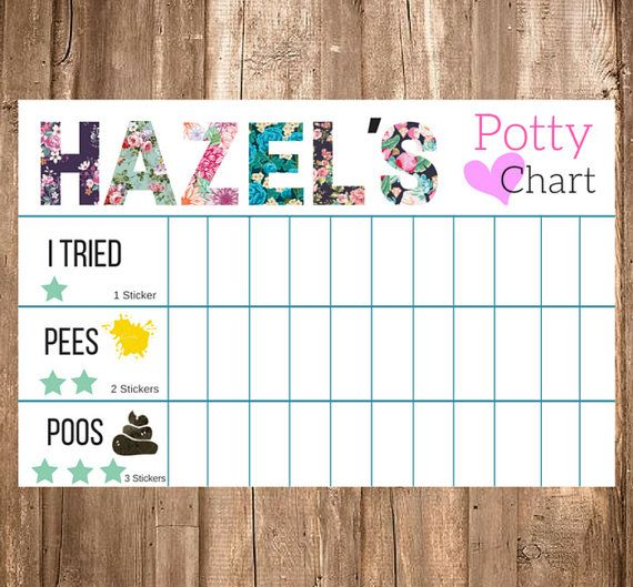 Custom potty training chart by creativebyjessica on etsy more