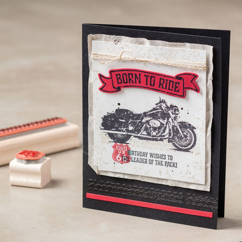 one wild ride clear mount stamp set by stampin 39 up 2016. Black Bedroom Furniture Sets. Home Design Ideas