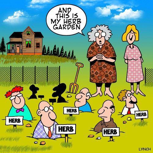 Herb gdns | Gardening humor, Herb garden, Herbs