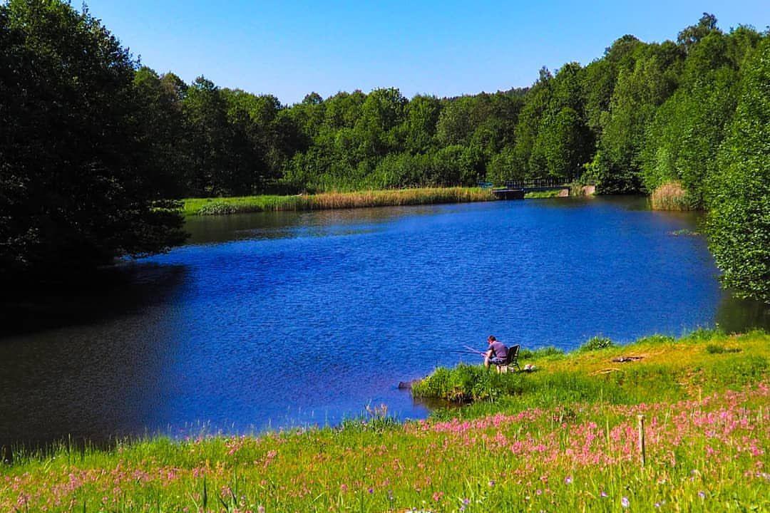 Bioro? Ło panie ja szalune  #przegladinstagrama #photophabryka #nofilter #nature #lake #view #summer #memories #fishing #polskafotografia #polishphoto #photography #olympus
