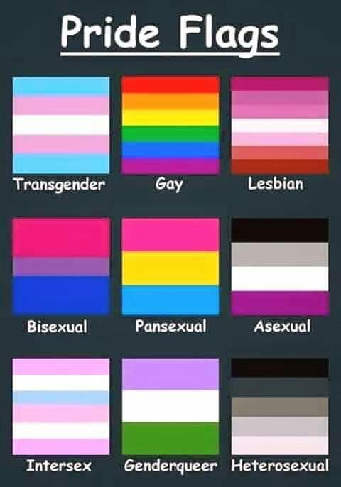 Heterosexual homosexual bisexual pansexual