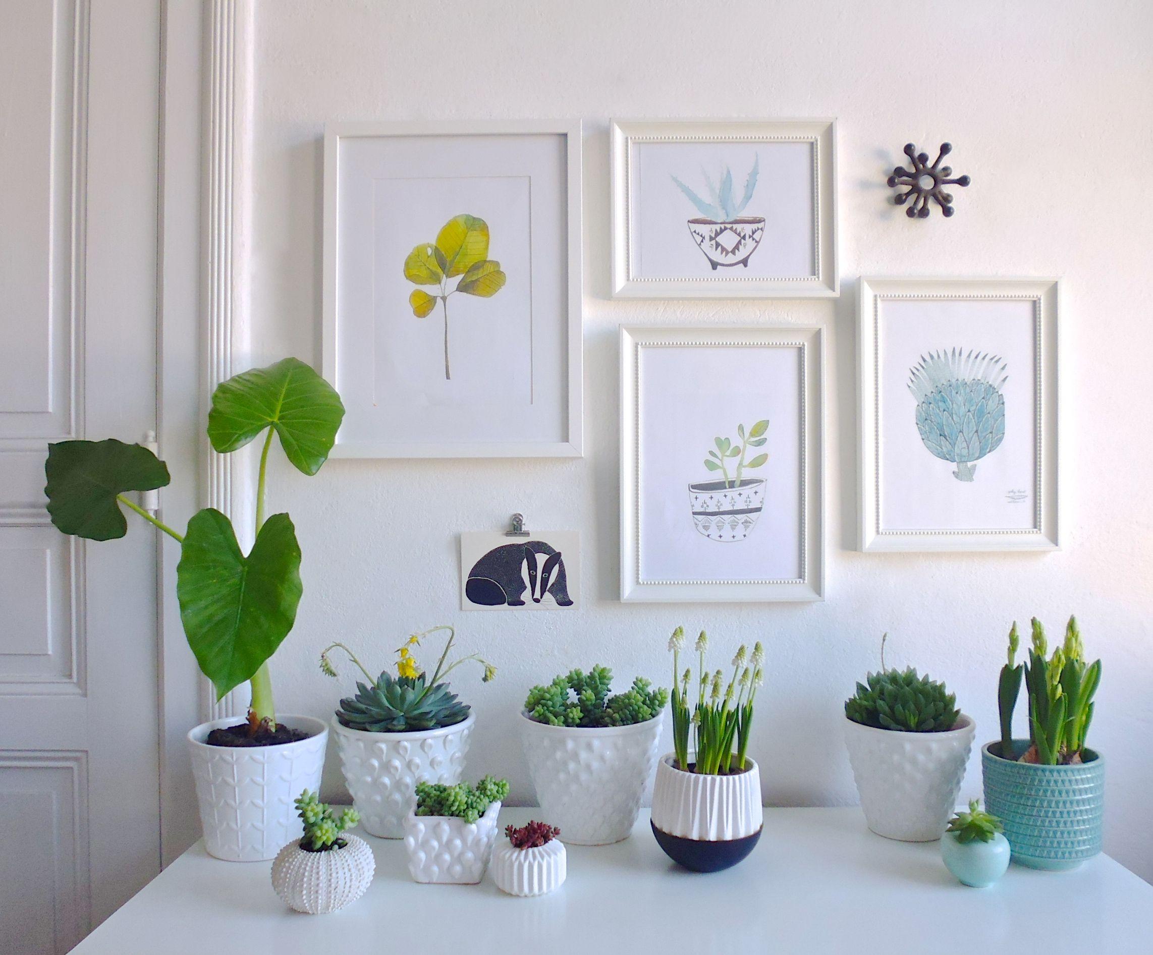 Neulich Beim Fenster Putzen Interior Plantsgreen