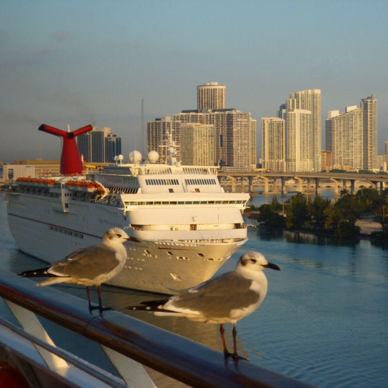 January Is Miami Cruise Month PortMiami Is The Cruise Capital Of - Miami cruise month
