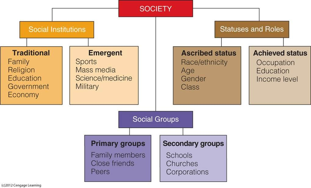 Components Of Social Structure Sociology Theory Sociological Concepts Sociology