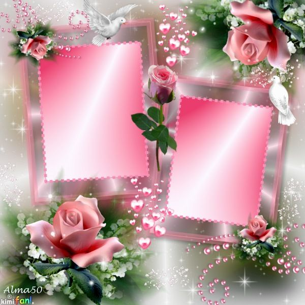 Related Image Beautiful Rose Frames Pinterest Cards
