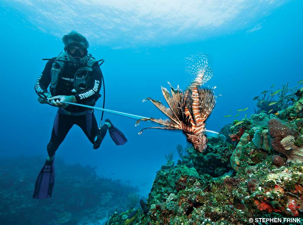 Alert Diver Public Safety Announcement Spearfishing