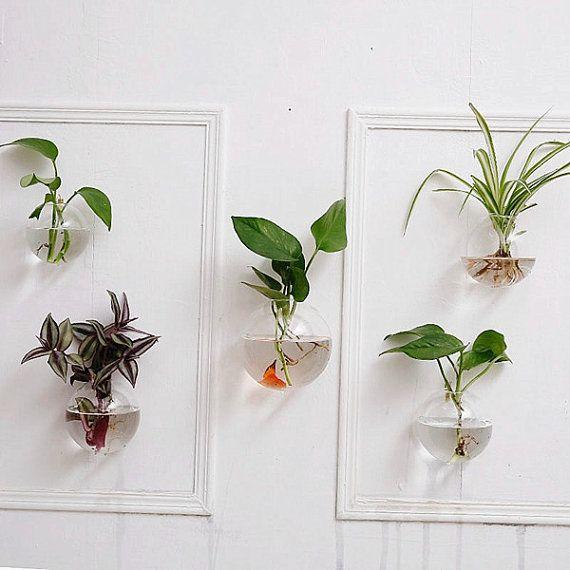 set of 5 bubble wall terrariums,indoor wall planters,wall fishbowl ...