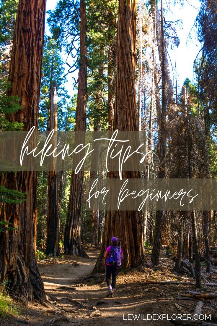 Photo of Hiking Tips for Beginners | Le Wild Explorer