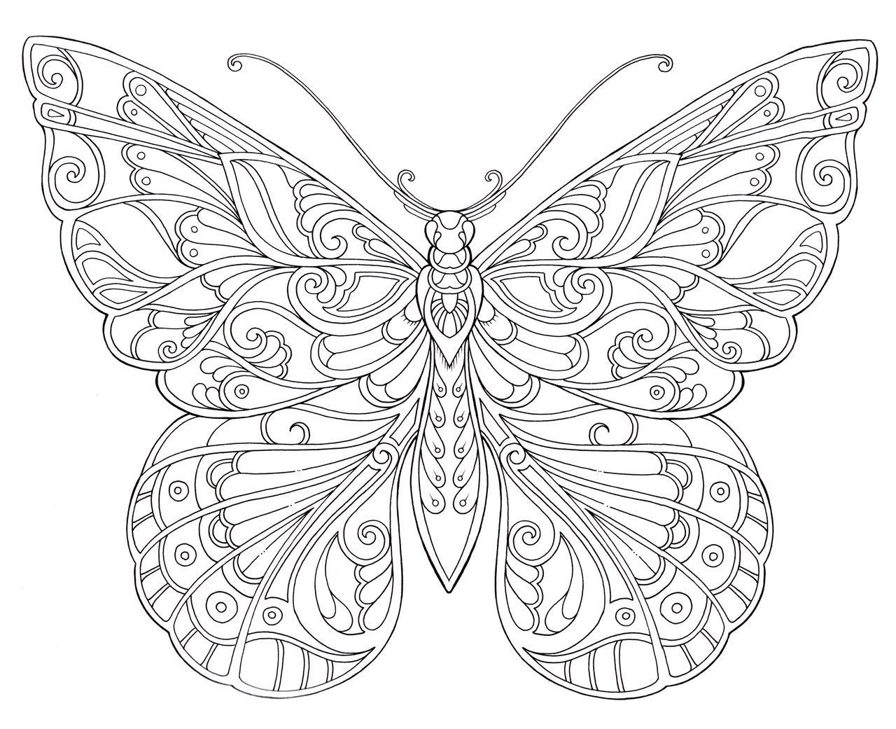 Johanna basford ausmalbilder johanna basford u for Coloring pages of butterflies for adults