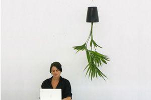 3 необычных способа растить цветы