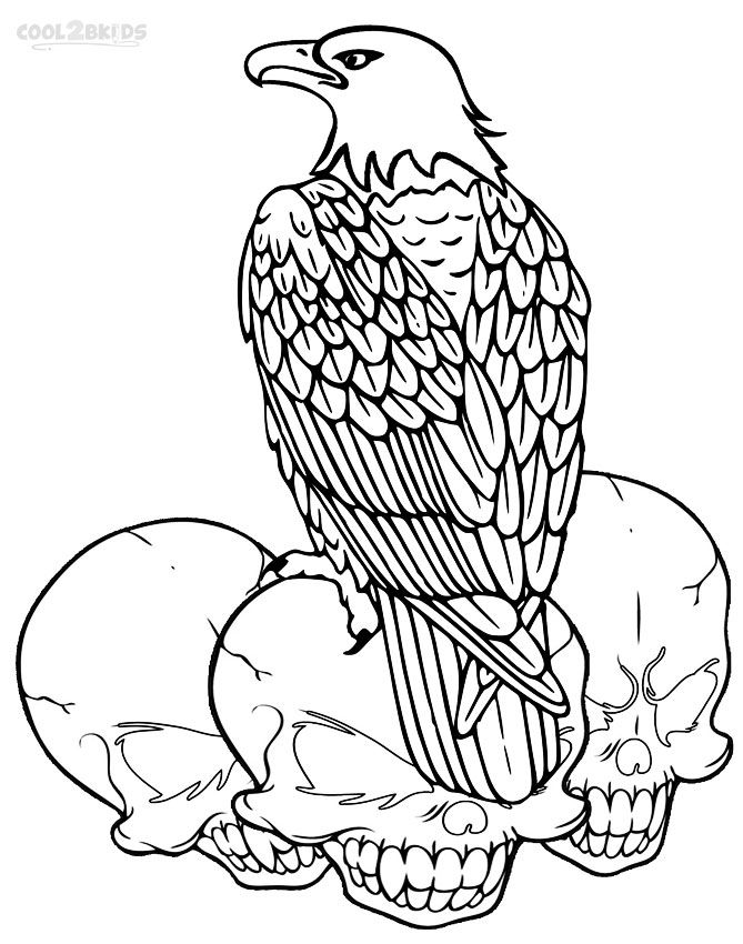 printable bald eagle coloring pages for kids cool2bkids - Eagle Coloring Pages 2
