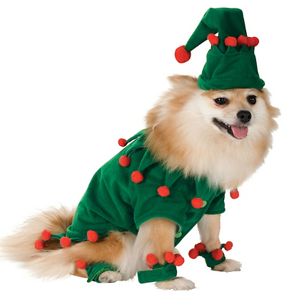 Santa Paws The 17 Best Dog Christmas Outfits On The Internet Dog
