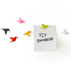 Hummingbird Magnet 6Pk, $11, now featured on Fab.
