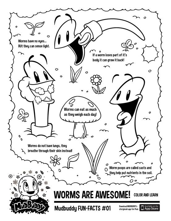 Print Out This FUN FACTS Coloring Page So Your Children Can Color And Learn About The